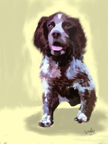 Brodie – The Pet Series