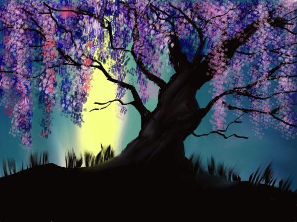 Blossom Series: Willow Blossom