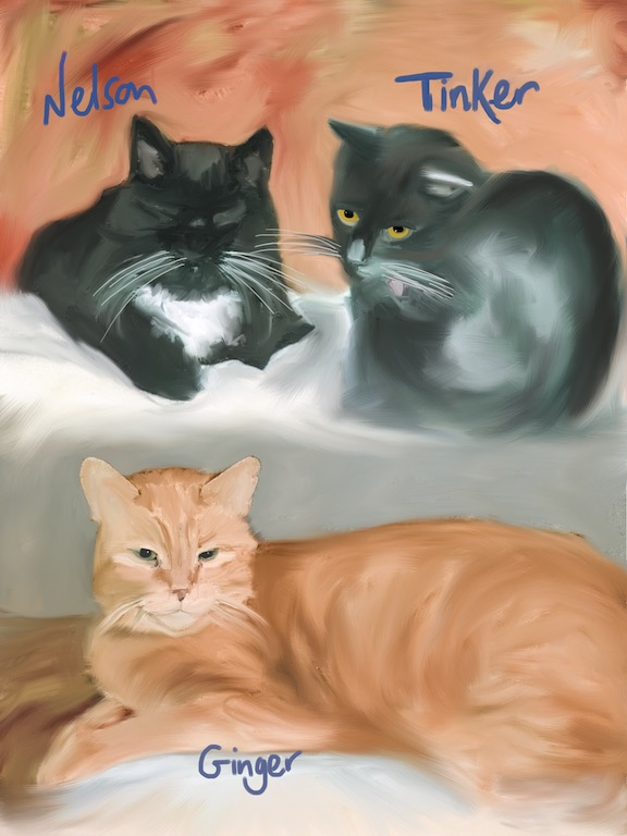 Nelson, Tinker & Ginger
